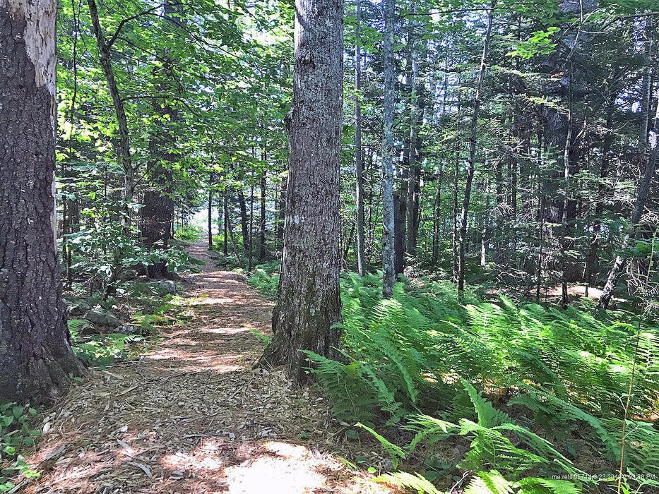 Lot #2 Provost Road, Jefferson, Maine 04348